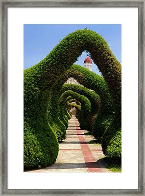 Topiary Garden Archways And Path In Zarcero Costa Rica With View Framed Print by Reimar Gaertner