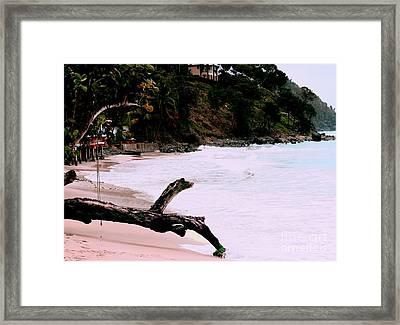 Tortola Bvi Framed Print by Tom Prendergast