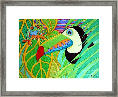 Toucan And Red Eyed Tree Frog Framed Print by Nick Gustafson