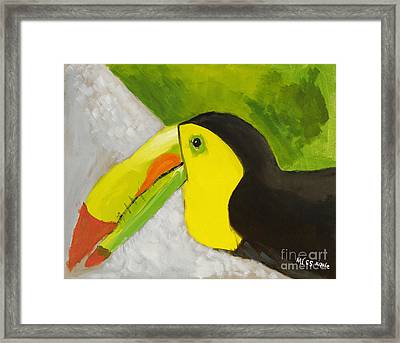 Toucan Framed Print by Katie OBrien - Printscapes