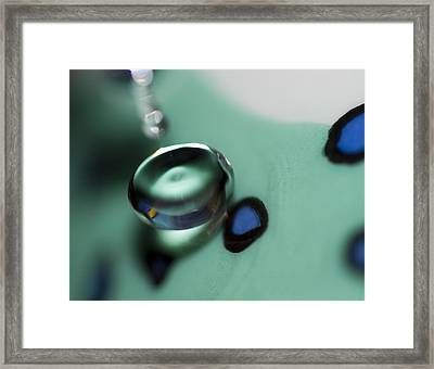 Touch Me Framed Print by Rebecca Cozart