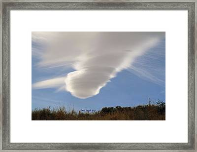 Touchdown Framed Print by Donna Kennedy