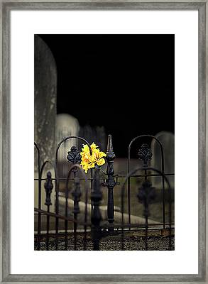 Toujours Souvenu Framed Print by Marion Cullen