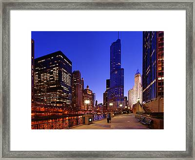 Tower View Framed Print by Donald Schwartz