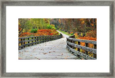 Towpath In Summit County Ohio Framed Print by Kristin Elmquist