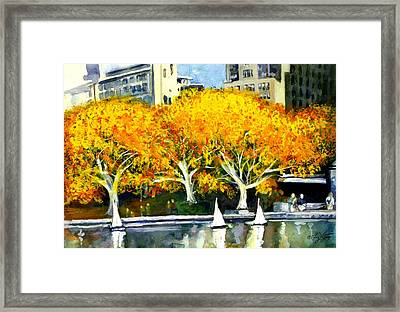 Toy Boats In The Park Framed Print by Liz Viztes