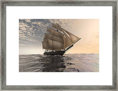 Tradewinds Framed Print by Carol and Mike Werner
