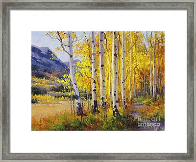 Trail Through Golden Aspen  Framed Print by Gary Kim
