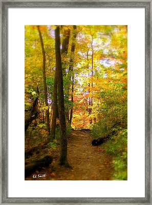 Trailhead Light Framed Print by Ed Smith