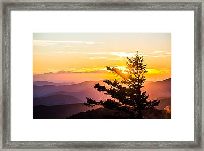 Tranquil Colors Framed Print by Shelby Young