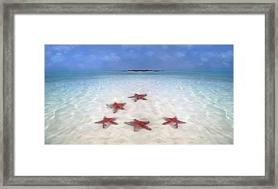 Tranquil Inspiration  Framed Print by Betsy Knapp