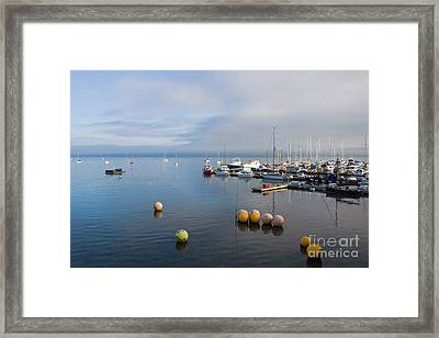 Tranquil Mylor Marina Framed Print by Terri Waters