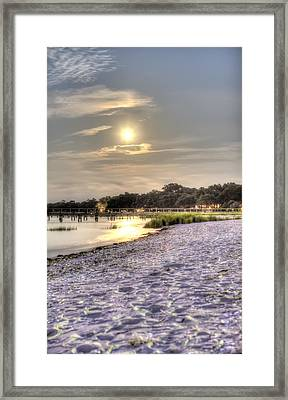 Tranquil Southern Night Framed Print by Dustin K Ryan