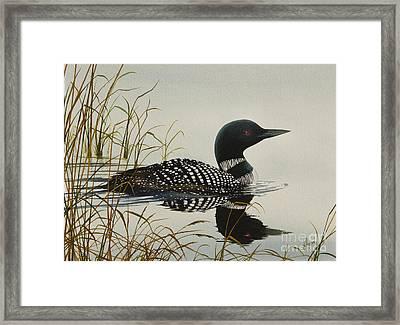 Tranquil Stillness Of Nature Framed Print by James Williamson
