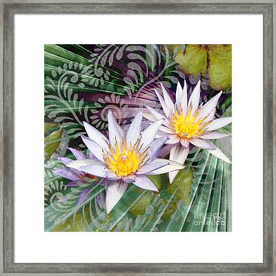 Tranquilessence Framed Print by Christopher Beikmann