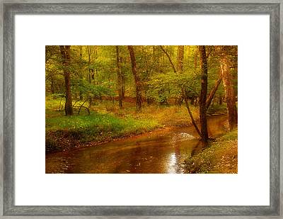 Tranquility Stream - Allaire State Park Framed Print by Angie Tirado