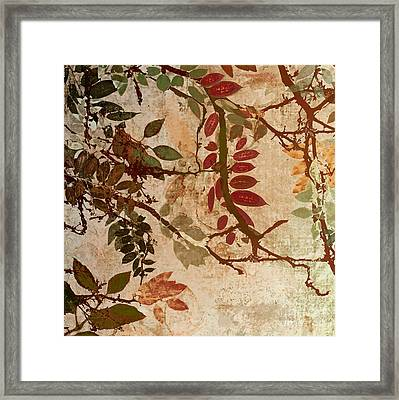 Transition Framed Print by Mindy Sommers