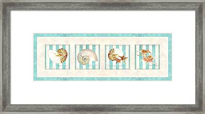 Treasures From The Sea - Nautilus Shell Framed Print by Audrey Jeanne Roberts