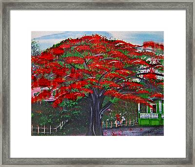Treasures Of Puerto Rico Framed Print by Gloria E Barreto-Rodriguez