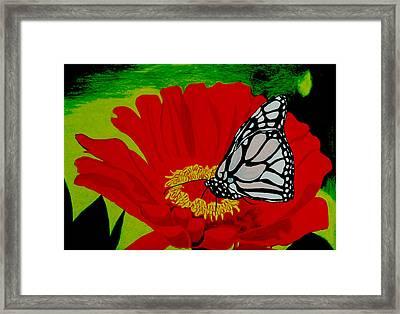 Treasures Framed Print by Ramneek Narang