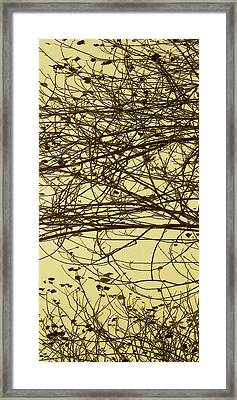 Tree Abstract In Yellow No 1 Framed Print by Ben and Raisa Gertsberg