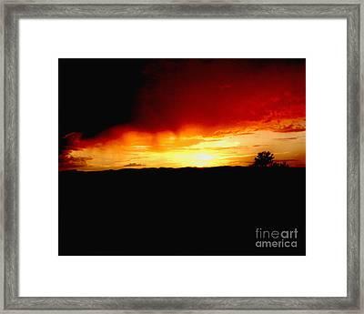 Tree At Sunset Framed Print by Merton Allen