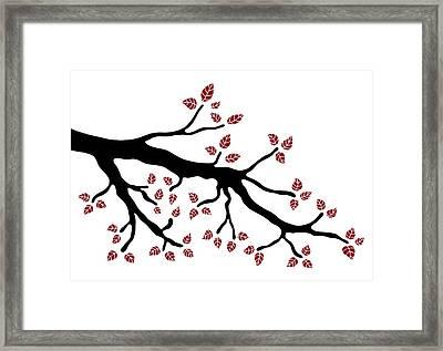 Tree Branch Framed Print by Frank Tschakert