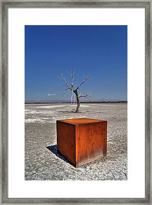 Tree Cubed Framed Print by Daniel Edwards