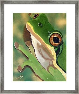 Tree Frog Eyes Framed Print by Debbie LaFrance