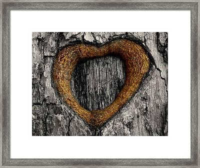 Tree Graffiti Heart Framed Print by Chris Berry