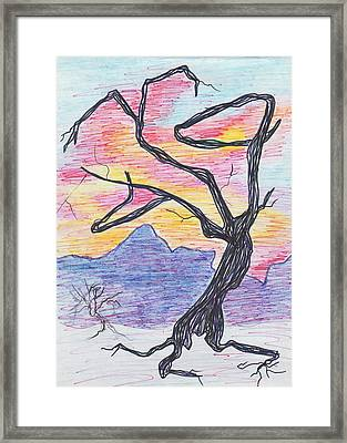 Tree In Sunset Framed Print by Suzanne  Marie Leclair