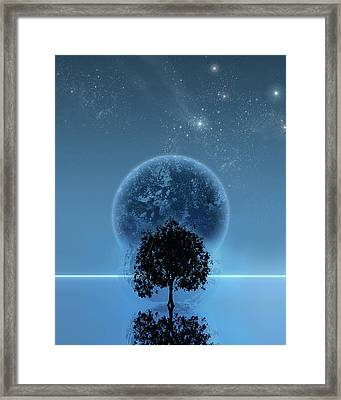 Tree Of Life Framed Print by Andreas  Leonidou