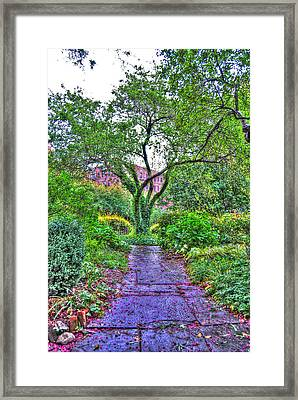 Tree Of Life At St. Luke In The Field Church Framed Print by Randy Aveille