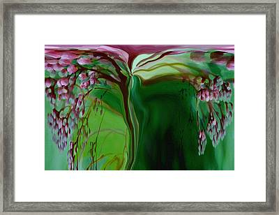 Tree Of Life Framed Print by Linda Sannuti