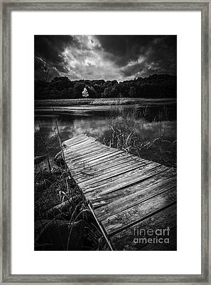 Tree Of Zen Black And White Framed Print by Edward Fielding