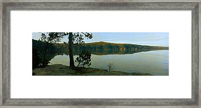 Tree On The Riverside, Wisconsin River Framed Print by Panoramic Images