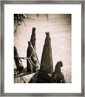 Tree People Framed Print by Marilyn Hunt