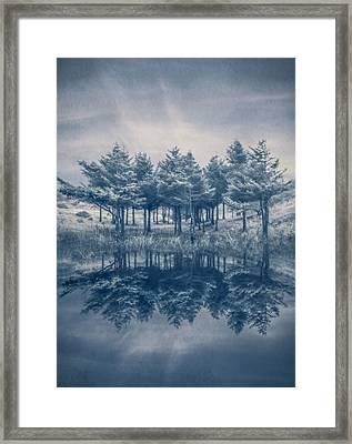 Trees In Blue Framed Print by Debra and Dave Vanderlaan