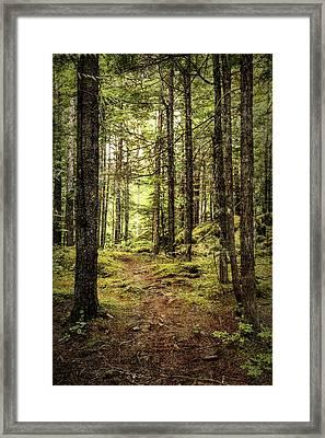 Trek  Framed Print by Stephen Stookey
