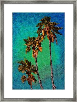 Tres Palmeras Framed Print by Paul Wear