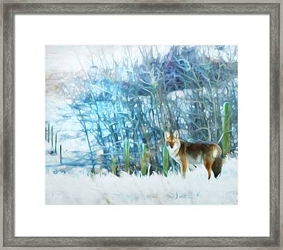 Trickster Coyote Framed Print by Theresa Tahara