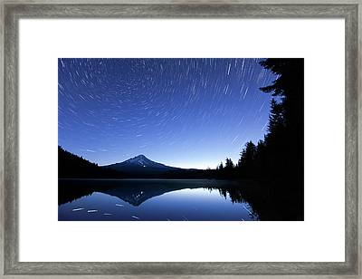 Trillium Blues Framed Print by Patrick Campbell