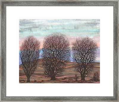 Trio Framed Print by Regina Valluzzi
