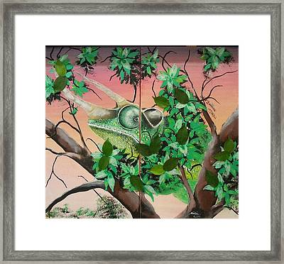 Trioceros Jacksonii Chameleon Framed Print by Judit Szalanczi