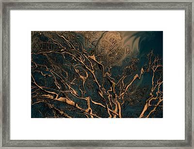 Trippy Tree Framed Print by Linda Sannuti