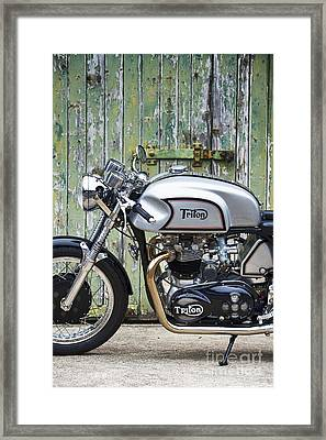 Triton In Colour  Framed Print by Tim Gainey