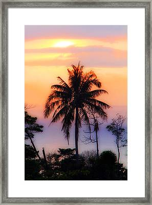 Tropical 6 Framed Print by Mark Ashkenazi