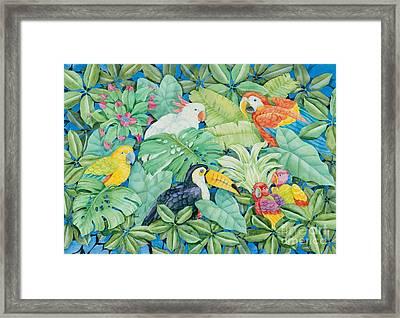 Tropical Birds Framed Print by Paul Brent