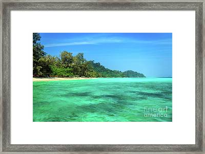 Tropical Coast Framed Print by Adrian Evans