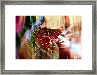 Tropical Grape Framed Print by Evie Carrier